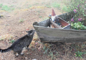 Sparky talking to Gnome in the Flower Boat